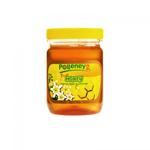 Polleney Pure Honey - 454g